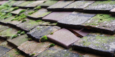 Bedfordshire roof repair costs